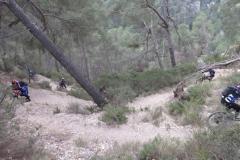 001IMG_2003